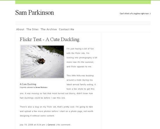Пример работы созданной wordpress темы