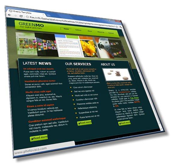 Шаблон сайта веб студии, используется – HTML + CSS + Flash - шаблон